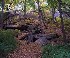 Inwood Hill Park – The last natural forest remaining in Manhattan